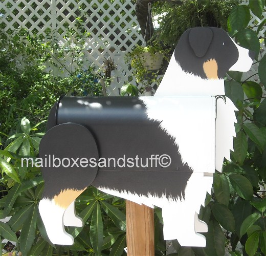 Australian Shepherd mailbox, dog mailbox shaped and painted like an Australian Shepherd, dog mailboxes