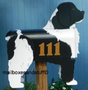 Custom painted Cockapoo mailbox with house numbers added