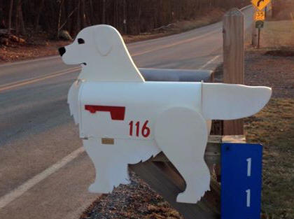 English Cream Golden Retriever Mailbox