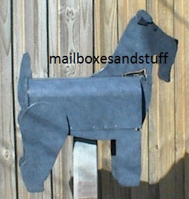 Kerry Blue Terrier lighter coloring