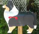 Tri Color Sheltie Mailbox, unique dog mailbox