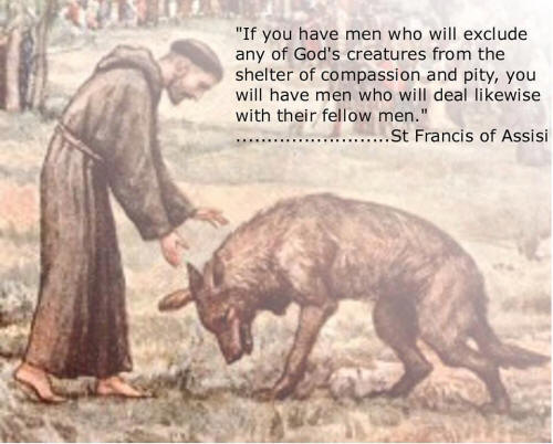Brother Francis Beloved Patron Saint of Animals