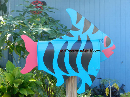 beautiful Striped Tropical fish , caribbean blue, hot pink and black