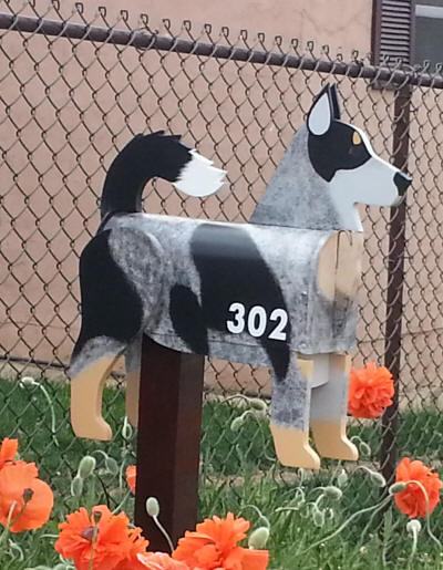 custom painted Blue Heeler Mailbox